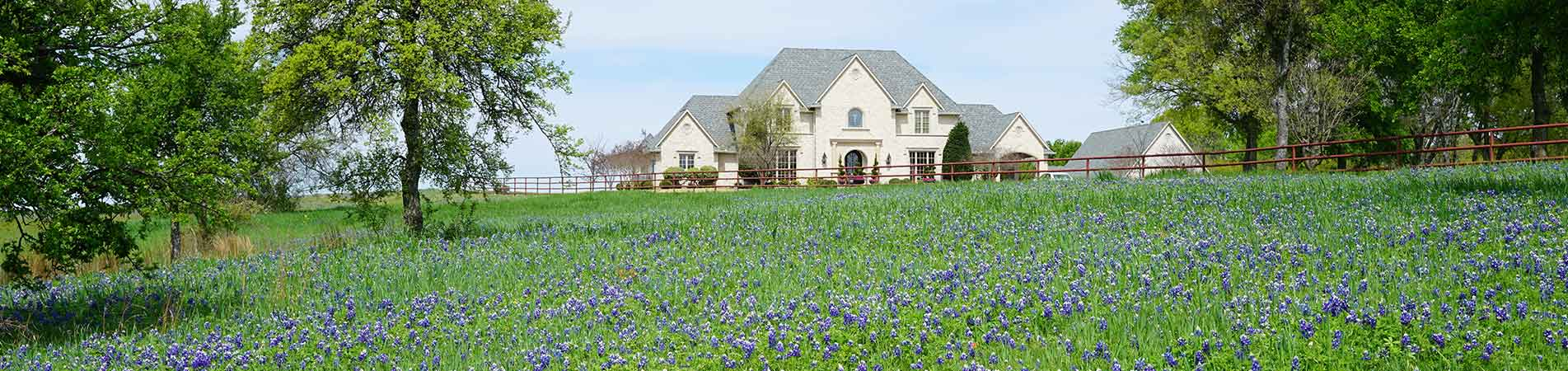 flowery field with mansion
